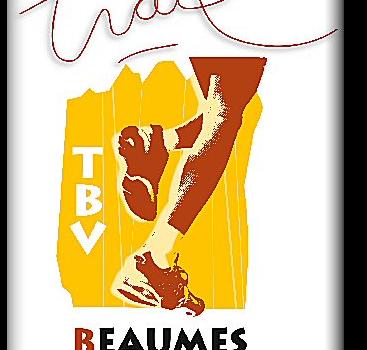 Logo TBV GM