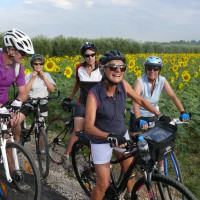 Vélo – Route , VTC ou VTT