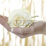 34870794-main-humaine-tenant-une-fleur