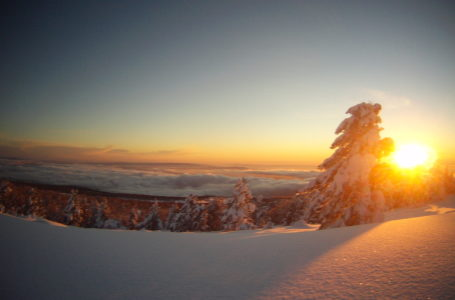 Snow Trail de Montgenèvre