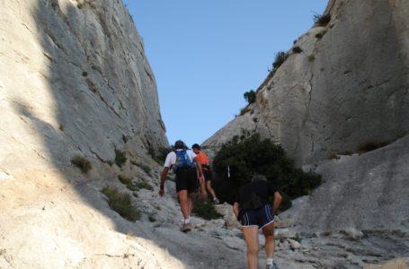 Trail Beaumes de Venise et Dentellière: … 9 eme édition.