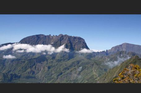 Manu la FLeche de la Réunion
